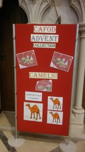 stephanies-camels-in-cathedral