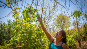 Edelmira, Farmer in El Salvador, is the focus for Fast Day