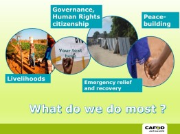 What does CAFOD Do?